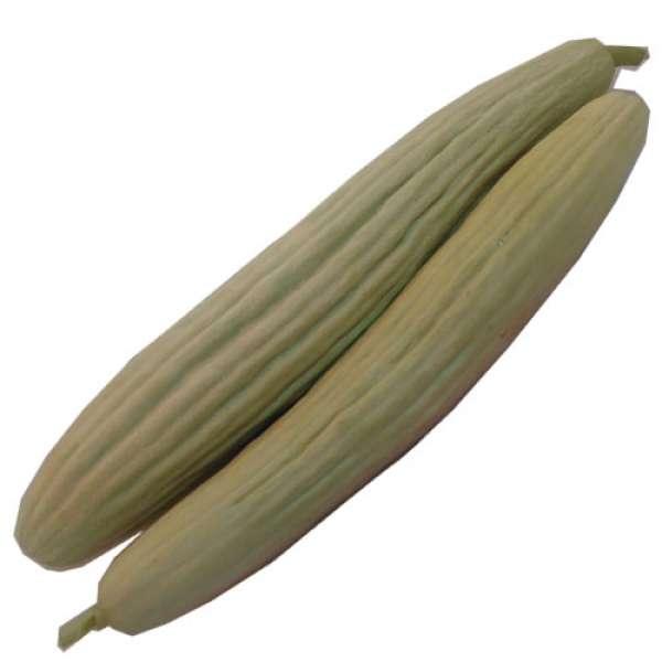 Pepino melão Bio